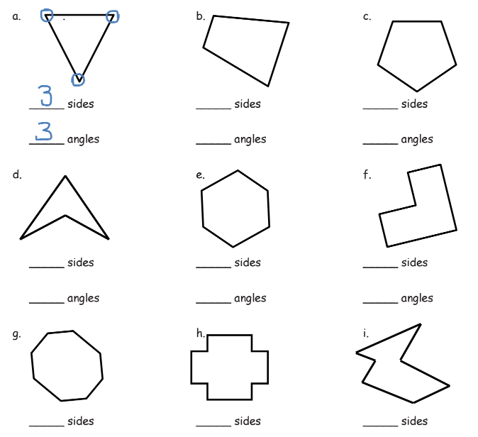 3rd Grade Two dimensional Shapes Worksheets