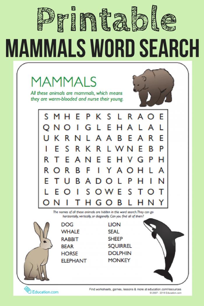 Animal Word Search Mammals