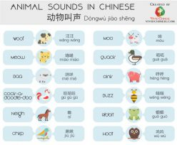 Learn Chinese: An Introduction To Pronouns