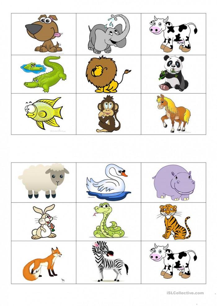 Animals Bingo Cards