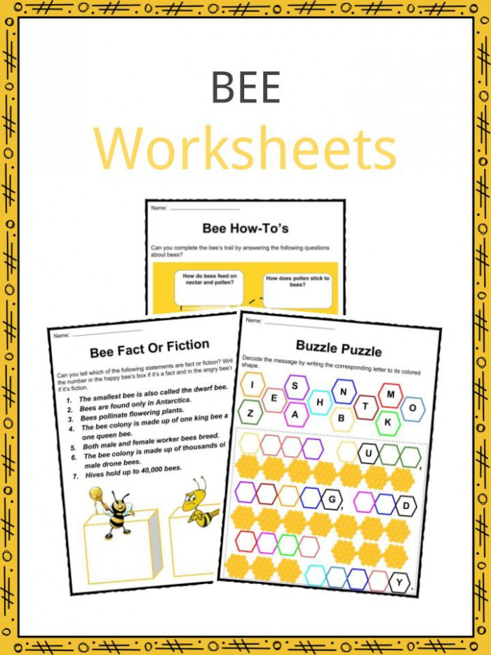 Bee Facts  Worksheets  Habitat   Life Span Information For Kids