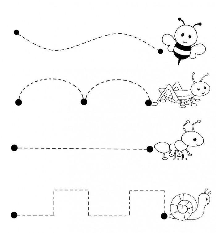 Bugs Trace Line Worksheet