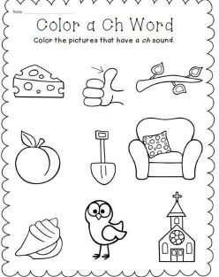 Digraph Sound Review
