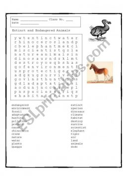 Animal Word Search: Endangered Species