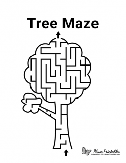 Amazing Tree Maze
