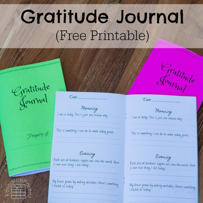 Gratitude Journal For Kids