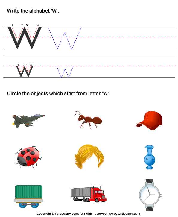 Identify Words That Start With W Worksheet