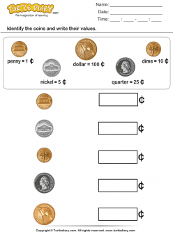 Identifying Coins