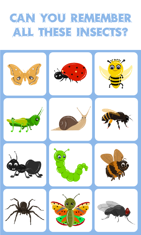 Insects Match Memory Match Game Is A Concentration