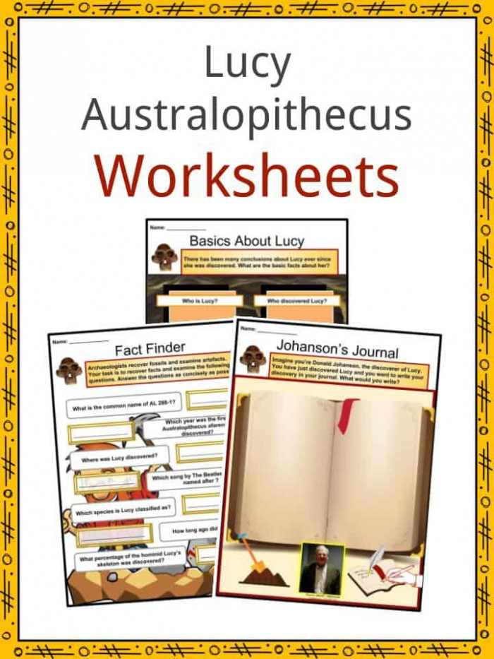 Lucy Australopithecus Facts  Worksheets  Discovery