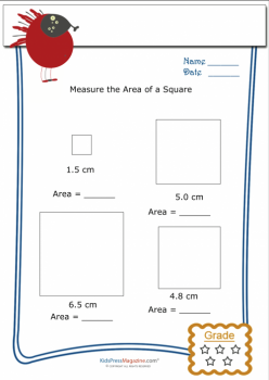 Area Of A Square #1