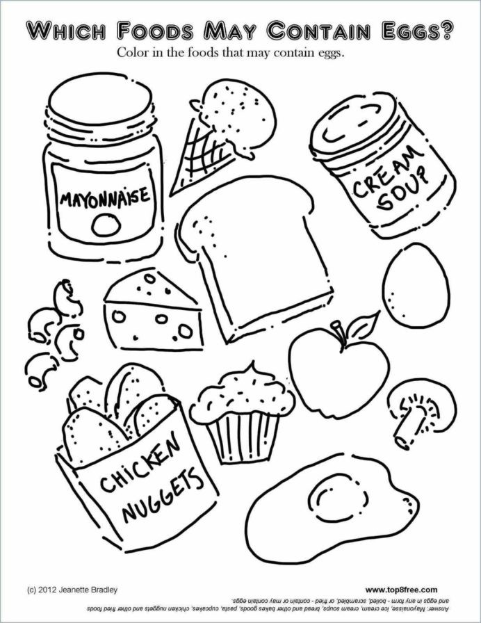 Plant Cell Coloring Beautiful Breathtaking Food Groups Worksheets