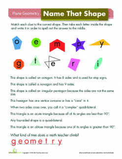 Shape Basics: Lines, Endpoints, And Angles