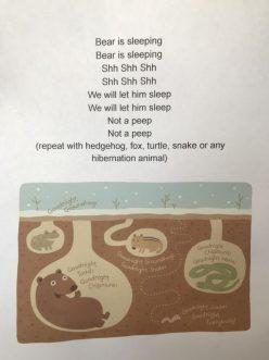 The Sleepy Sloth Gets Lost