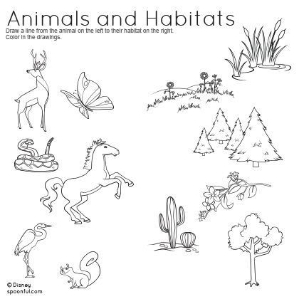 Animal Habitats Worksheets Animal Habitats Worksheets Nd Grade