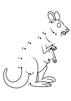 Kangaroo Dot To Dot