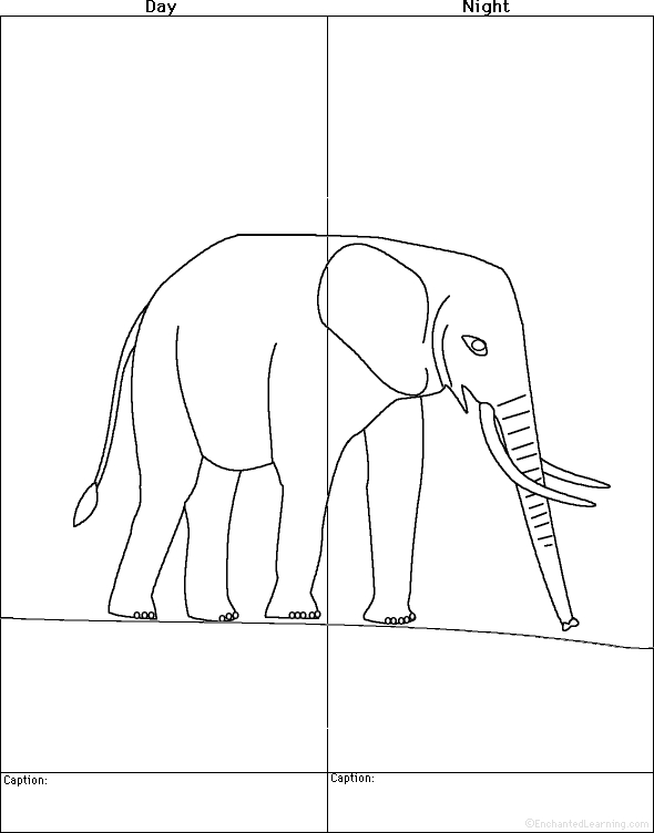 Draw An Elephant  Day And Night