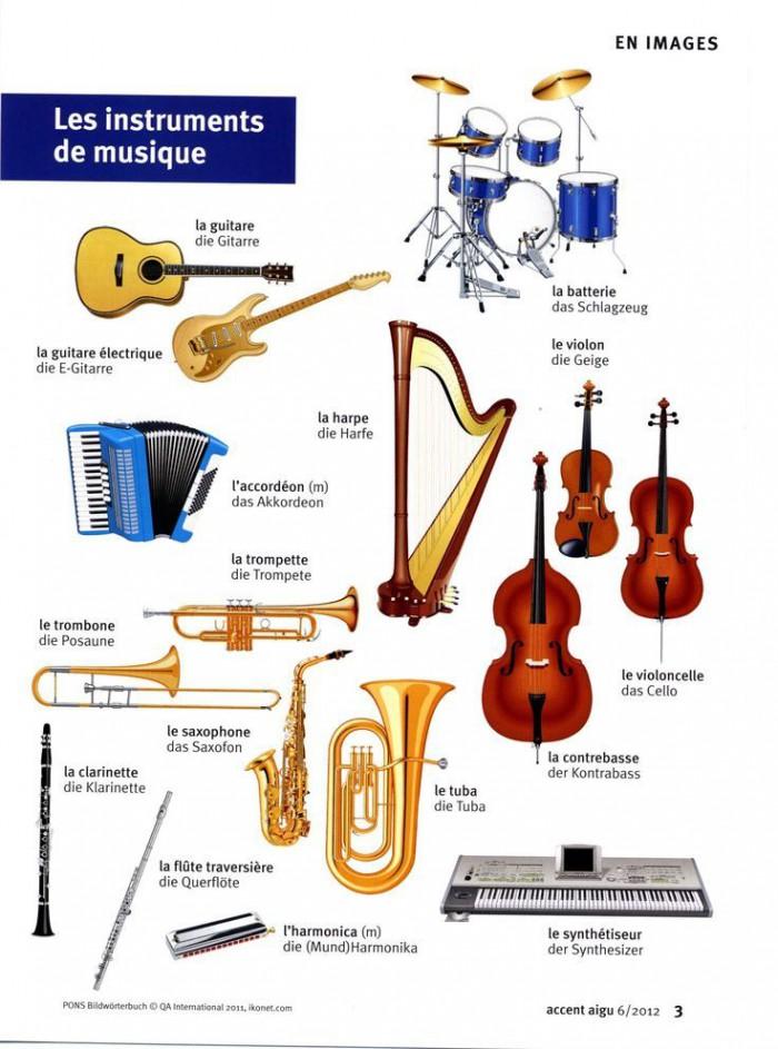 Educational Infographic  Les Instruments De Musique