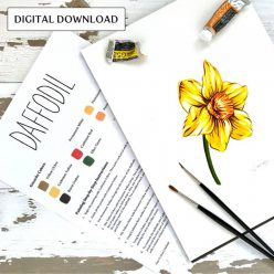 Color A Daffodil