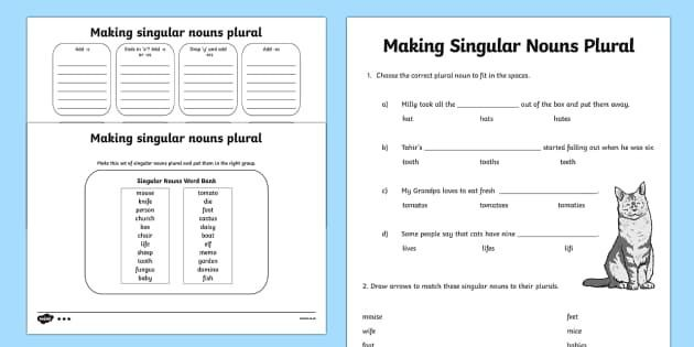 Making Singular Nouns Plural Activity Sheet Differentiated