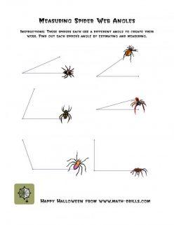 Spider Web Math