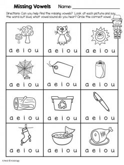 Find The Vowels