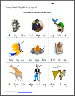 Phonics And Spelling Practice: Final __ch And __tch Consonant Clusters