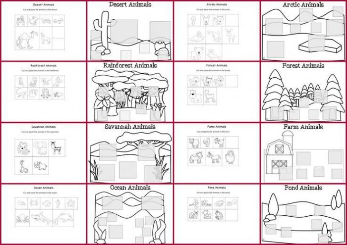 Rainforest Animal Habitats Worksheets