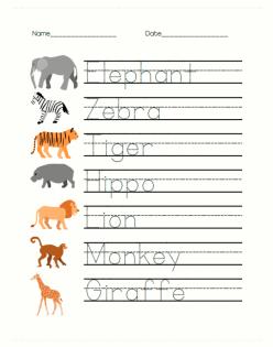 Safari Addition