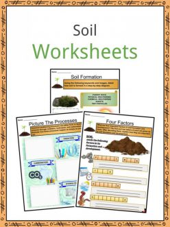 Layers Of Soil: Get The Dirt!