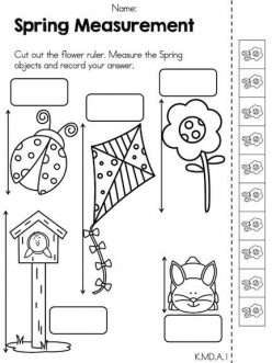 Spring Math: Measurement