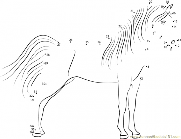Standding Horse Dot To Dot Printable Worksheet