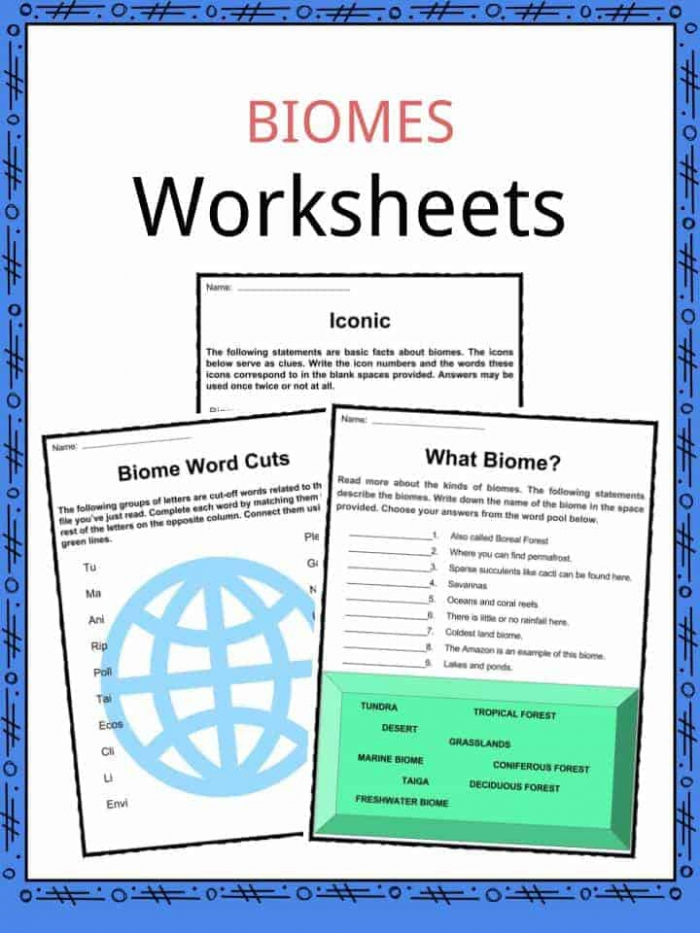 Biome Facts   Worksheets