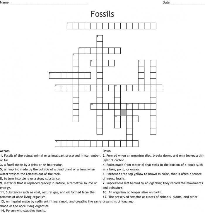 Fossils Crossword Puzzle