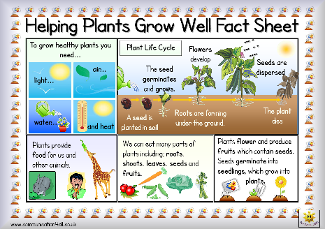Heres A Simple Fact Sheet On Plant Growth Includes A Helpful
