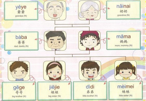 Learn Chinese Family Members Vocabulary Words And Phrases