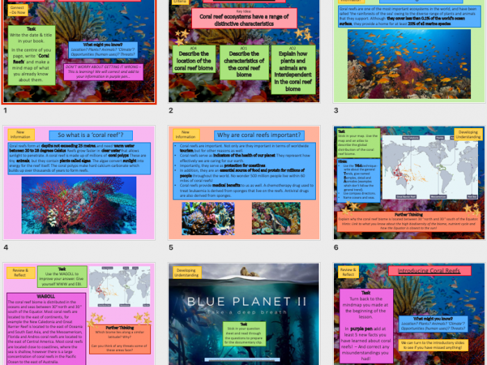 Lesson On The Coral Reef Ecosystem  Biome Ks Geography