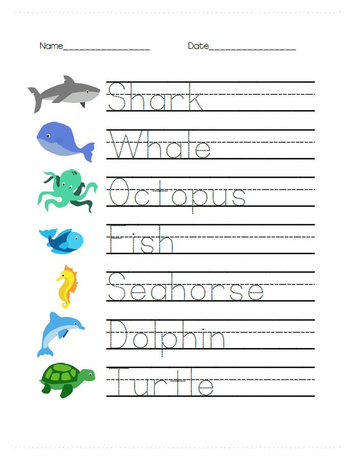 Ocean Animal Math And Writing Worksheets For Prek
