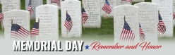 Compare And Contrast: Memorial Day, Labor Day, And Veterans Day