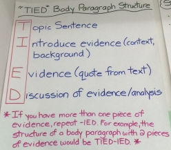 Argument Writing: Match The Evidence