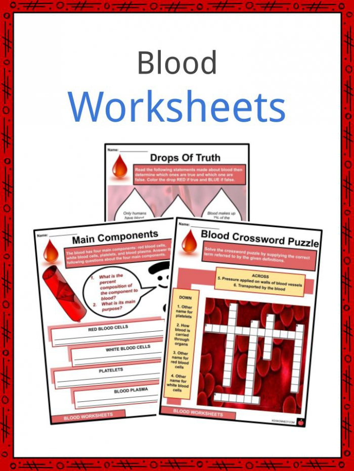 Blood Facts  Worksheets   Constitutes For Kids