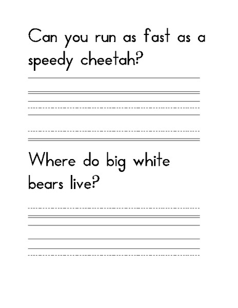 Cheetahs And Bears Copy The Sentences Worksheet For St Rd