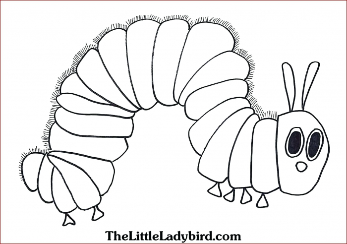 Caterpillar Coloring Page Worksheets 99Worksheets