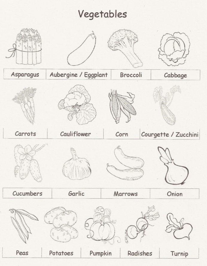Adding Vegetables Worksheets 99Worksheets