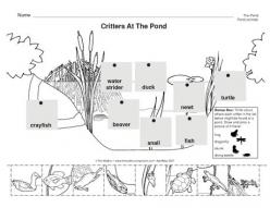 Prefix Pond