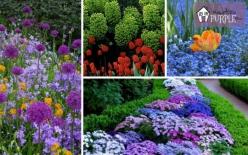 Color The Garden Path