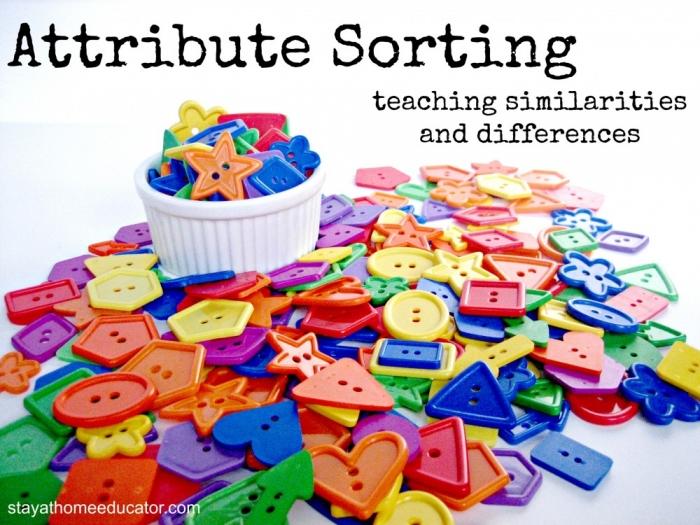 Attribute Sorting Activities For Preschoolers