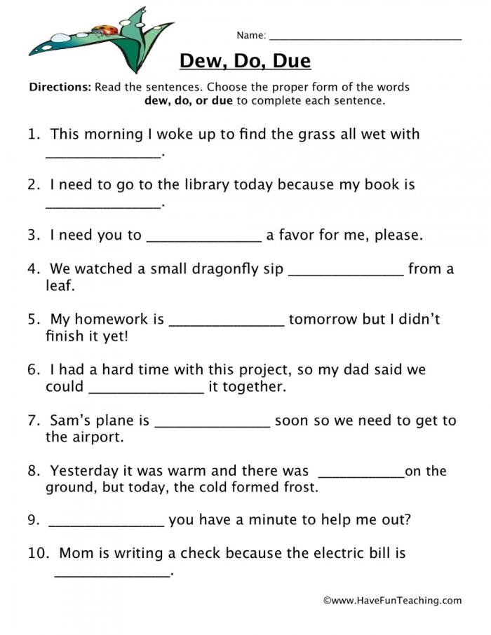 Dew  Do  Due Homophones Worksheet  Have Fun Teaching
