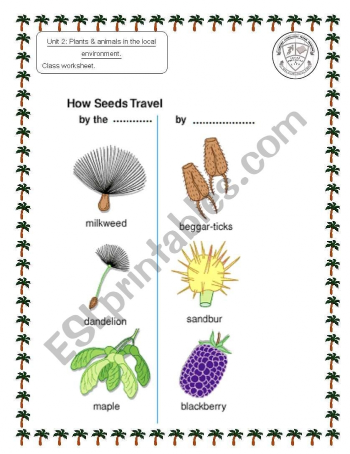 English Worksheets How Seeds Travel