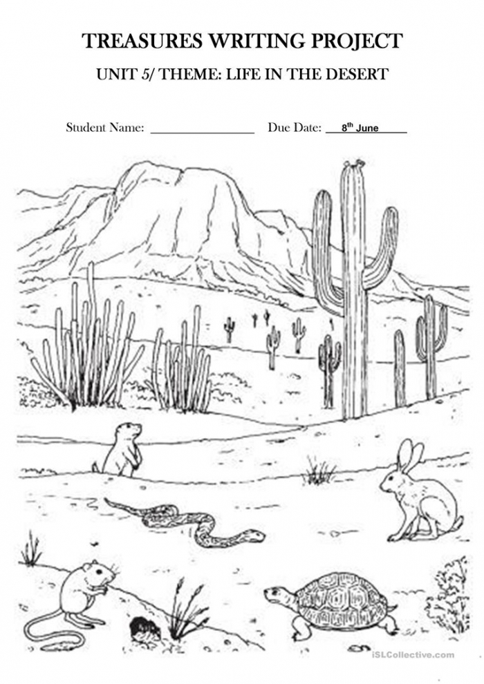 Life In The Desert Treasures Writing Project Unit